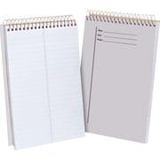 "Ampad® Clear Steno Pad, 6"" x 9"", 100 Sheets/Pad (20524)"