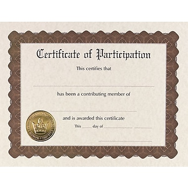Great Papers® Certificate of Participation, 3/Pack