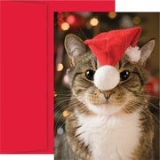 Great Papers® Festive Cat Holiday Card with Red Envelopes