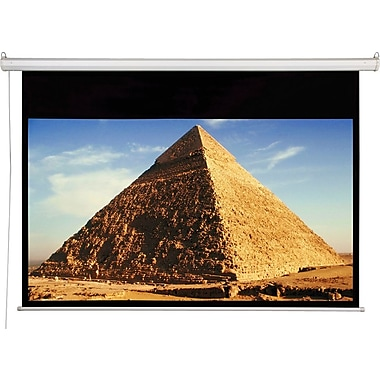 Draper AccuScreens 109in. Electric Wall / Ceiling Mount Projector Screen, 16:10, White Casing