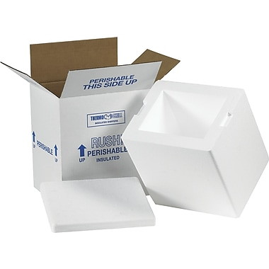Staples Insulated Shippers, Interior Size: 8in. x 6in. x 9in., 8/Case