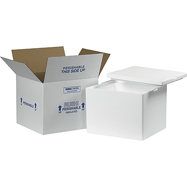 Staples Insulated Shippers, Interior Size: 12in. x 10in. x 9in., 1 Kit/Case