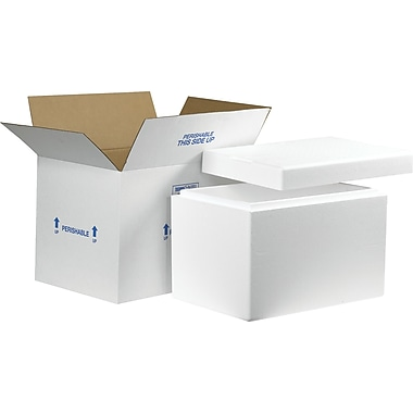 Staples Insulated Shippers, Interior Size 19in. x 12in. x 12-1/2in., 1 Kit/Case