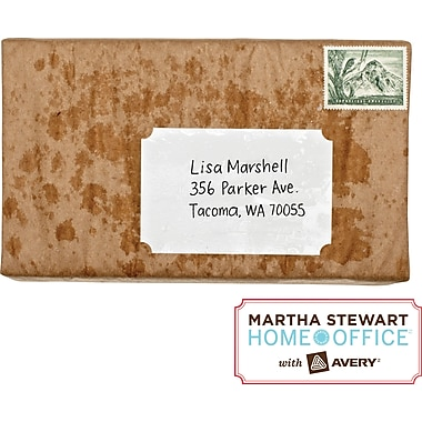 Martha Stewart Home Office™ with Avery™ Weatherproof Labels, Classic, 2-1/2in. x 3-3/4in., 12/Pack