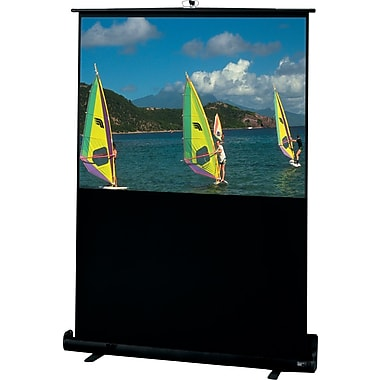 Draper 46in. Diagonal 16:9 Aspect Traveller Portable Projection Screen