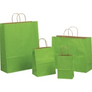Tinted Color Shadow Apple Green with Stripe Shopping Bag, Size 16 W x 6 D x 19 –1/4 H