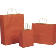 "Tinted Color Shadow Terra Cotta  with Stripe Shopping Bag, Size 8"" W x 4-3/4 "" D x  10-1/2"" H"