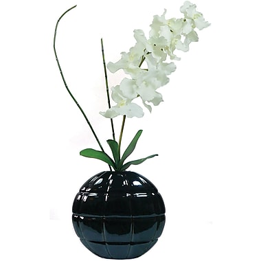 Laura Ashley Real Touch White Vanda Orchid in Designer Ceramic Container