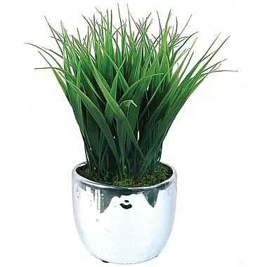 Laura Ashley Grass Arrangements in Designer Silver Ceramic Containers