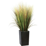 "Laura Ashley® 60"" Silk Grass Floor Plant in Contemporary Planter"