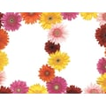 Gerbera Daisy 2-Up Invitations with Envelopes
