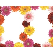 Great Papers® Gerbera Daisy 2-Up Invitations with Envelopes