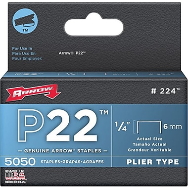 Arrow® Fastener P22 Staple, 5/16in.