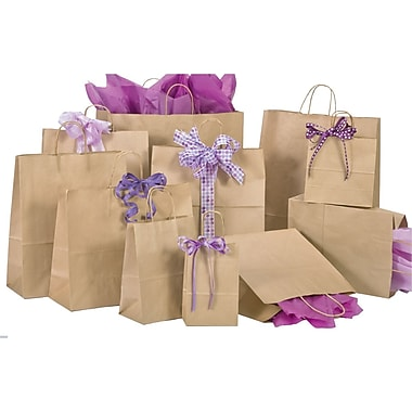 Natural Kraft Shopping Bags, Size 5-1/2in. W x 3-1/4in. D x 8-3/8in. H