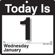 "2014 AT-A-GLANCE® ""Today Is"" Wall Calendar, 9 3/8"" x 12"""