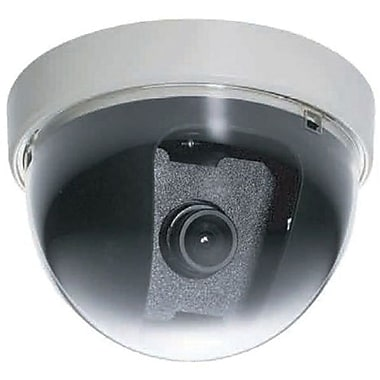 EverFocus® 1/3in. CCD Outdoor Miniature Dome Network Camera