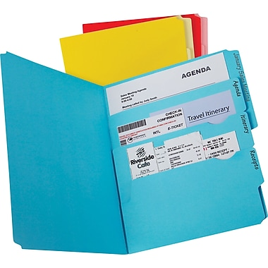 Pendaflex® Divide It Up® Multi-Section File Folders, Assorted Colours, 24/Pack