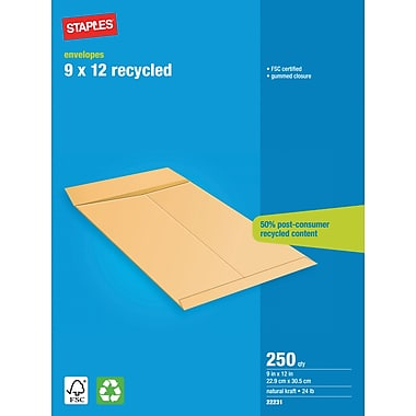 Staples® Catalogue Envelope, 9x12, 250/Box