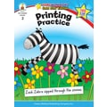 Carson-Dellosa Printing Practice Resource Book