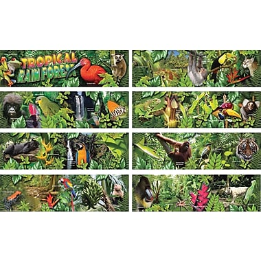Mark Twain Tropical Rain Forest Bulletin Board Set