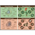 Mark Twain Animal & Plant Cells Bulletin Board Set