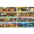 Mark Twain Wildlife Habitats Bulletin Board Set