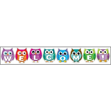 Carson-Dellosa 110192 Colorful Owls Welcome Bulletin Board Set
