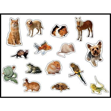 Carson-Dellosa Pets: Photographic Shape Stickers