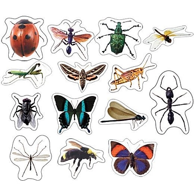 Carson-Dellosa Insects: Photographic Shape Stickers