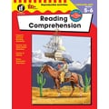Instructional Fair Reading Comprehension Resource Book, Grades 5 - 6