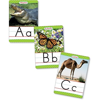 Scholastic Reading, Animals From A to Z Manuscript Alphabet Set
