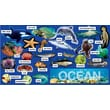 Scholastic Ocean Plants & Animals Mini Bulletin Board
