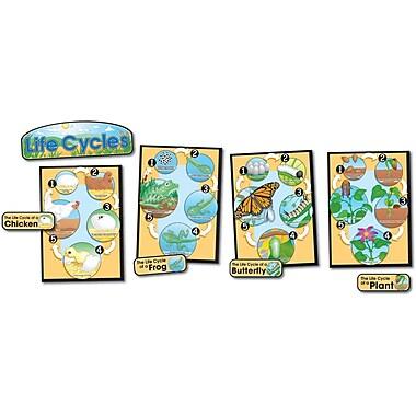 Carson-Dellosa Life Cycles Bulletin Board Set