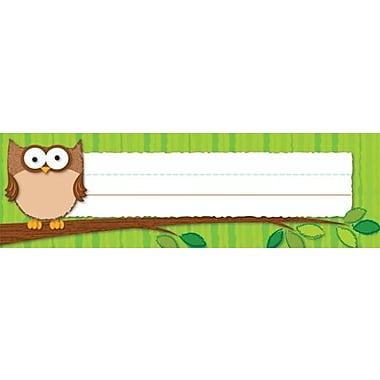 Carson-Dellosa Owls Nameplates