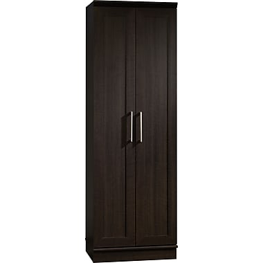 Sauder HomePlus 2-Door Cabinet, Dakota Oak