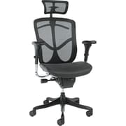 Alera Mesh Executive Office Chair, Adjustable Arms, Black (ALEEQA41ME10B)