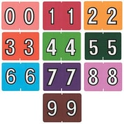 Oxford® Datafile Compatible Numeric Labels