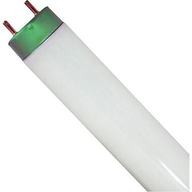 GE® T8 Garage & Basement Lightbulb, 36/Pack, Cool White