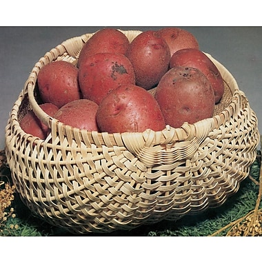 Commonwealth Basket Blue Ridge Basket Kit, Potato Basket