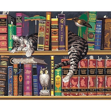 Dimensions Paint By Number Kit, 20in. x 16in., Frederick The Literate