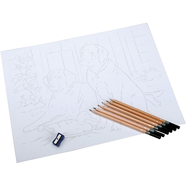 Reeves Sketching By Number Kit, 11-1/2in. x 15-1/2in., Black Labrador
