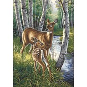 Dimensions Paint By Number Kit, 14 x 20, White-Tailed Deer