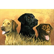 Reeves Paint By Number Artist's Collection, 12 x 16, Labs In Marsh