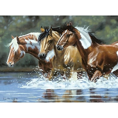 Reeves Paint By Number Artist's Collection, 12in. x 16in., Heading Upstream