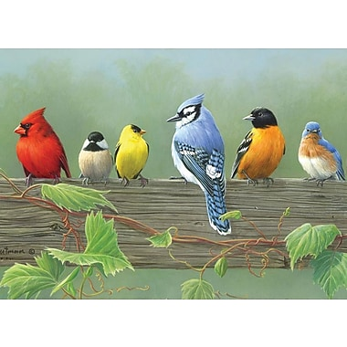 Reeves 16in. x 12in. Paint By Number Artist's Collection, Rail Birds (PBNACL-5)