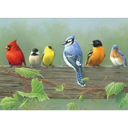 "Reeves 16"" x 12"" Paint By Number Artist's Collection, Rail Birds (PBNACL-5)"