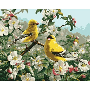 Plaid:Craft Paint By Number Kit, 16in. x 20in., Goldfinches