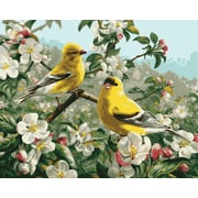 Plaid:Craft Paint By Number Kit, 16 x 20, Goldfinches