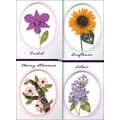 Quilled Creations Quilling Kit, Elegant Floral Cards