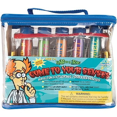 Be Amazing Toys Come To Your Senses Lab In A Bag Kit